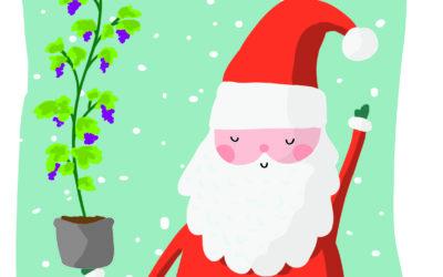 Auguri di Buone Feste e Felice Anno Nuovo